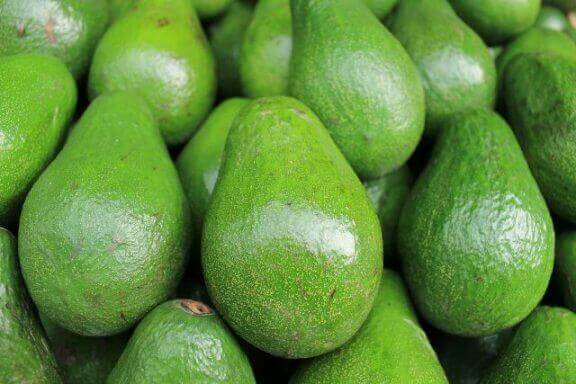Avocado Fruits Image