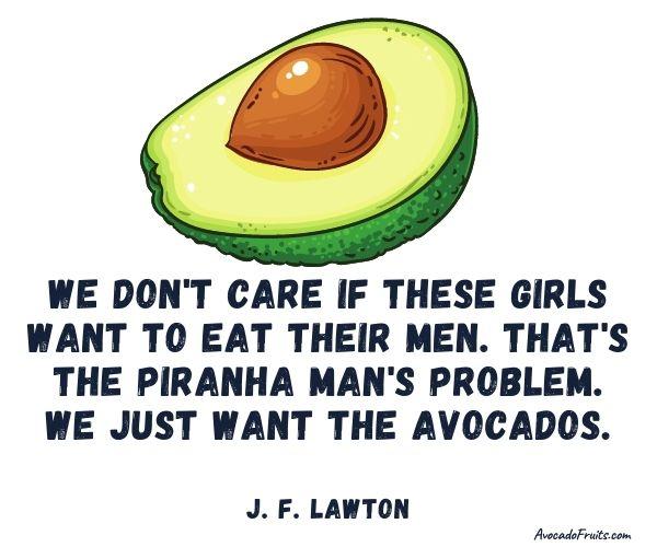 Avocado Quotes