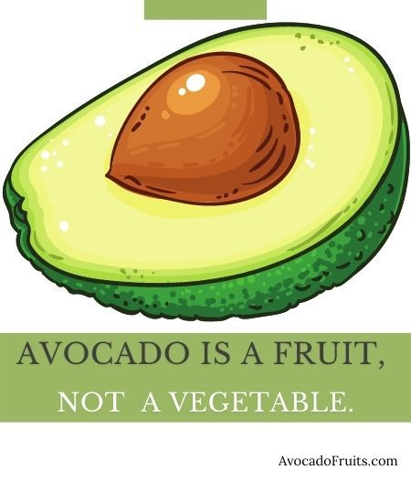 Avocado is a fruit, not vegetable.