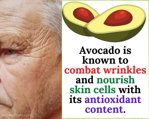 Avocado is known to combat wrinkles and nourish skin cells with its antioxidant content. Avocado benefits for skin