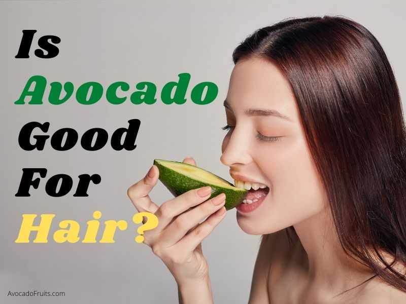 Is Avocado Good For Hair