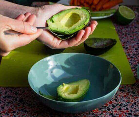 avocado fruit eating