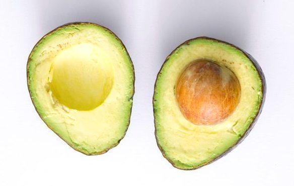 avocado fruits seeds