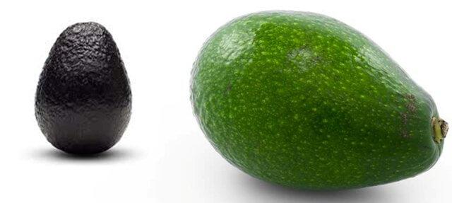 Black and Green Skin Avocados