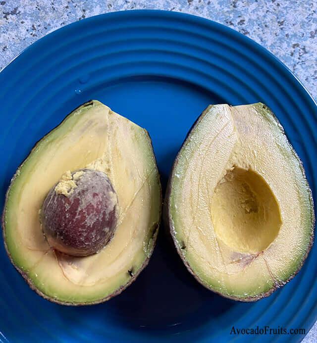 Avocado Pics