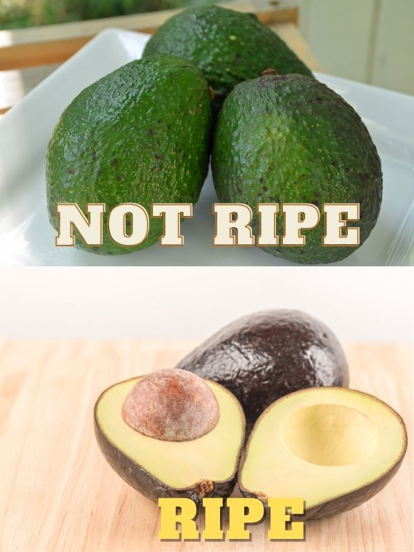 Unripe and Ripe Avocados How To Ripen Avocados At Home