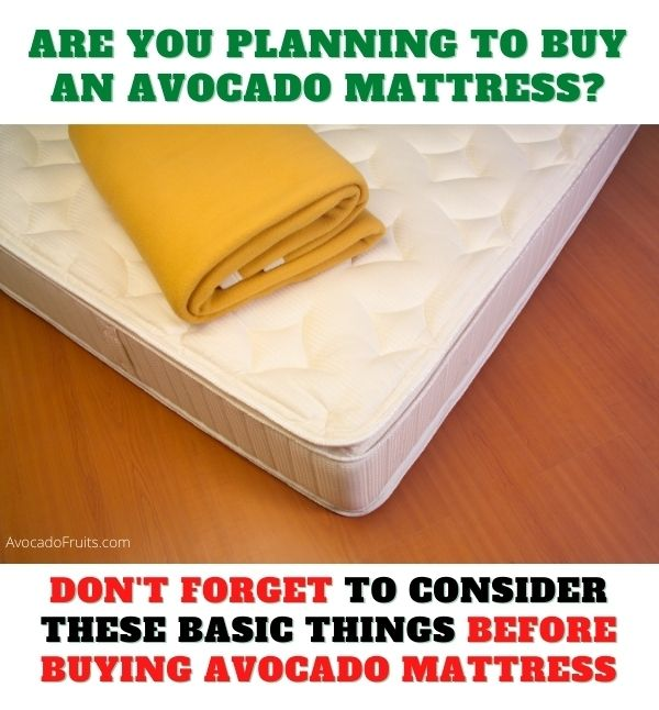 before buying avocado mattress